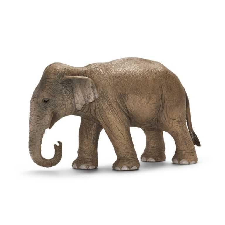 Zvířátka Schleich - samice slona asijského