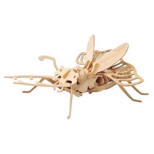 Dřevěné 3D puzzle dřevěná skládačka hmyz - Brouk E007
