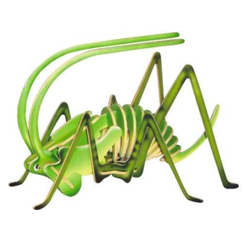 Dřevěné 3D puzzle dřevěná skládačka hmyz - malý Cvrček EC015