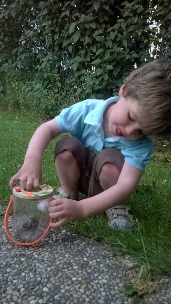 Bigjigs Toys Nádobka na pozorování hmyzu